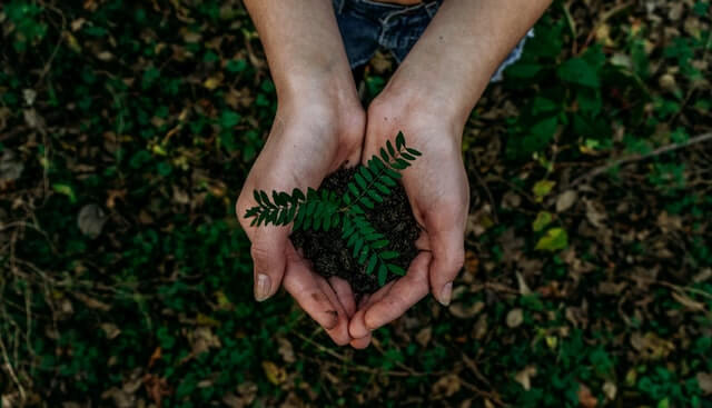 ecommerce sostenibile